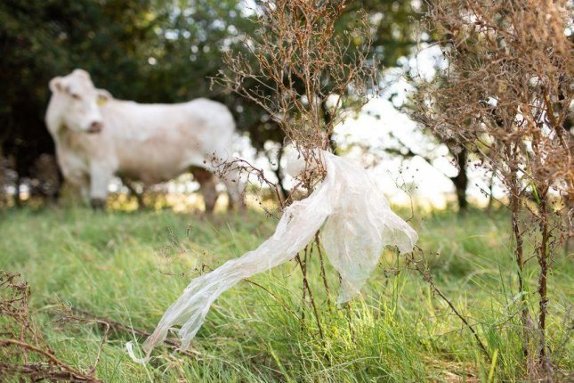 Kristie West, who owns a ranch and bed and breakfast in Pleasanton, Texas, has worked to raise awareness about the fatal impact plastic bags have on livestock. Photo by Callie Richmond for The Texas Tribune
