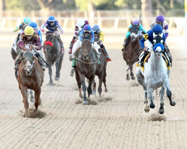 Cupid (grey, blue silks) wins the Rebel at Oaklawn Park on Saturday, shooting his arrow right into the heart of Kentucky Derby consideration. (Oaklawn Park, Coady Photography)