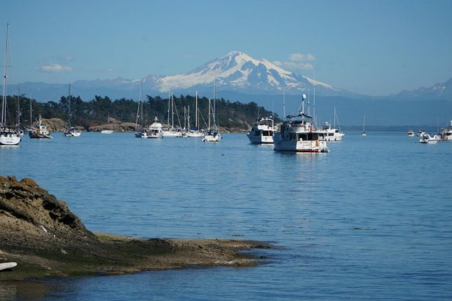 Scientists used tide gauge measurements in the Puget Sound to identify uplift on land caused by episodic tremors and slow slip earthquakes. Photo by Pixabay/CC