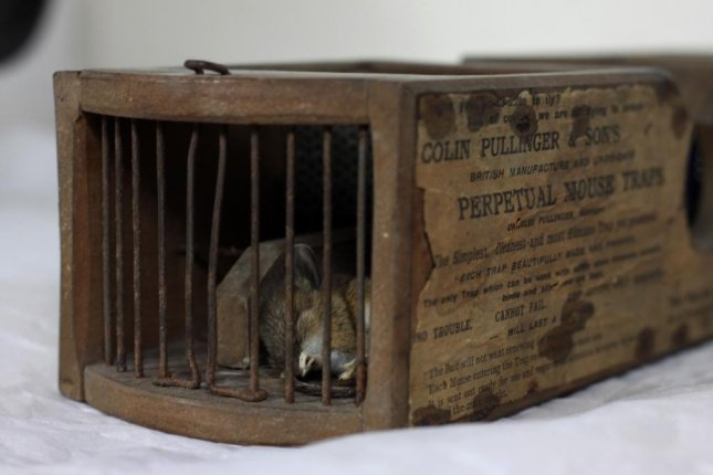 A British museum said this mousetrap dating from the 1860s was on display when it caught a mouse that wandered into the exhibit. Photo courtesy of the Museum of English Rural Life
