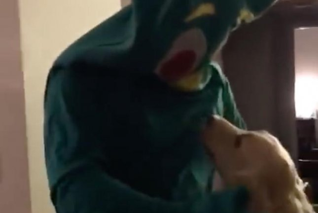 A dog got the opportunity to play with a life-sized version of her favorite Gumby toy as her owner Ben Mesches dressed up in a Gumby costume.  Screen capture/Ben Mesches/YouTube