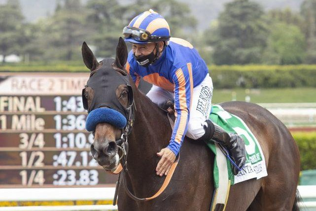 As Time Goes By and jockey Mike Smith celebrate victory in Saturday's Grade II Santa Maria Stakes. Photo courtesy of Santa Anita