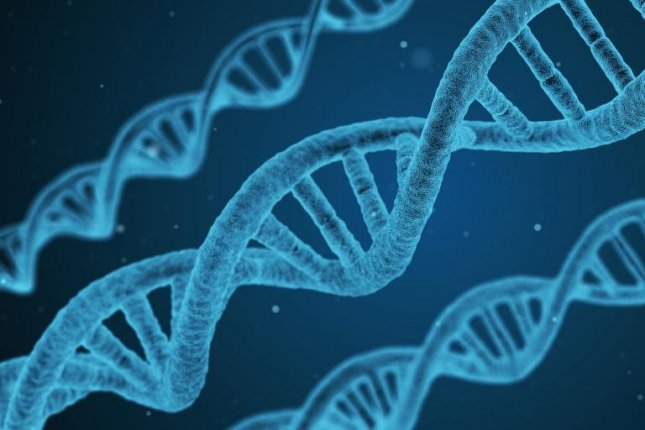 Researchers' new technique in gene editing improves the precision of the DNA technology and moves it closer to treating a wide variety of genetic diseases, according to a study. Photo by qimono/pixabay