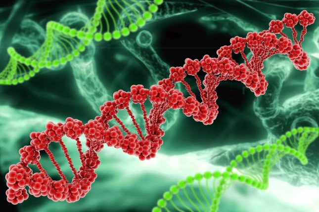 New research undermines the RNA world theory, inspiring a team of scientists to suggest a second, alternative RNA-DNA origin story. A rendering reveals the ladder shape of a DNA strand. Photo by Gen Epic Solutions/Shutterstock