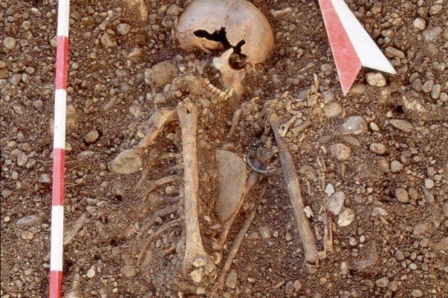 Scientists found the genome of the plague bacterium among human remains from the Stone Age. Photo by Stadtarchäologie Augsburg/MPG