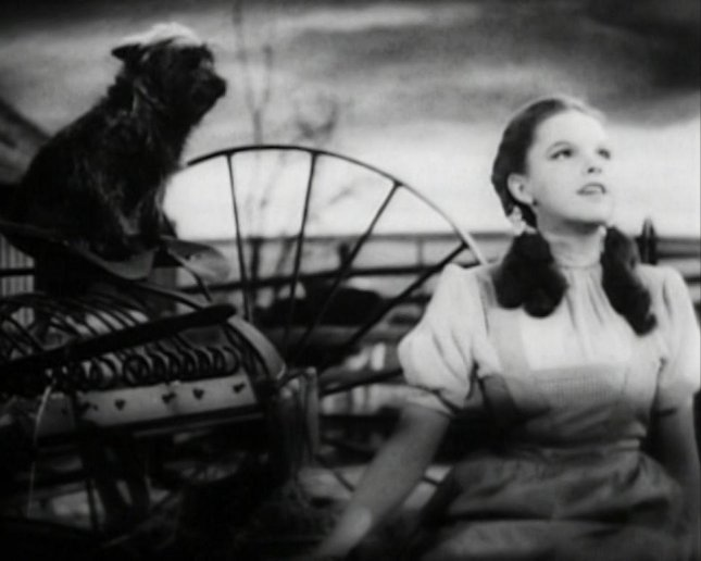 Judy Garland performing Over the Rainbow in the classic film The Wizard of Oz. Screenshot photo by Wikimedia Commons