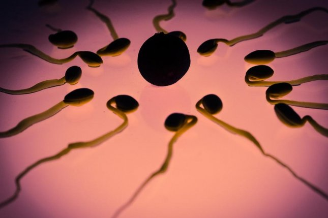 A transgender woman produced viable sperm, only months after she stopped therapy to halt puberty. Photo by TBIT/Pixabay