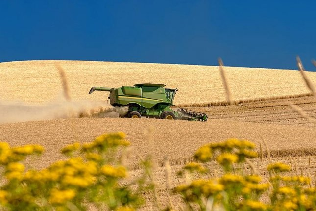 Wheat is harvested in eastern Washington state. Photo by Charles Knowles/Wikimedia Commons