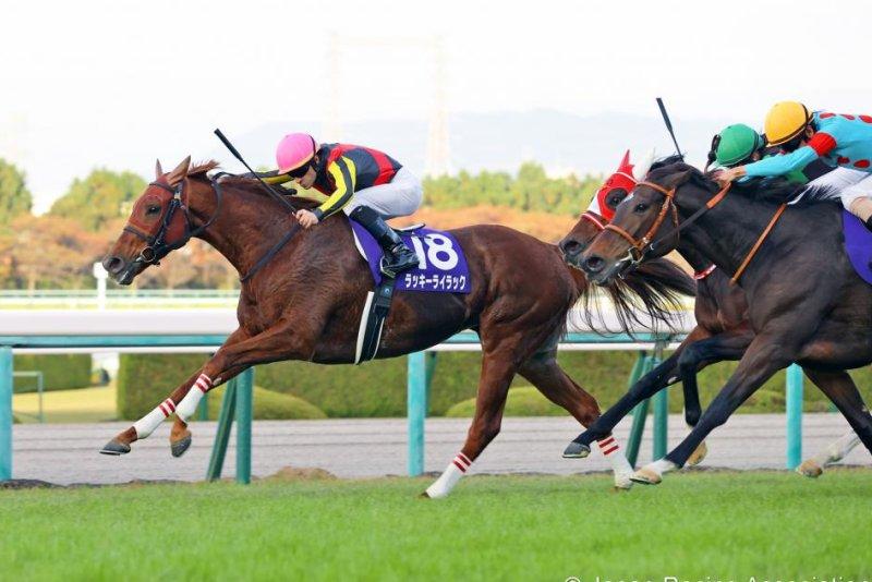 Lucky Lilac wins Sunday's Grade 1 Queen Elizabeth II Cup at Hanshin Racecourse. Photo courtesy of Japan Racing Association