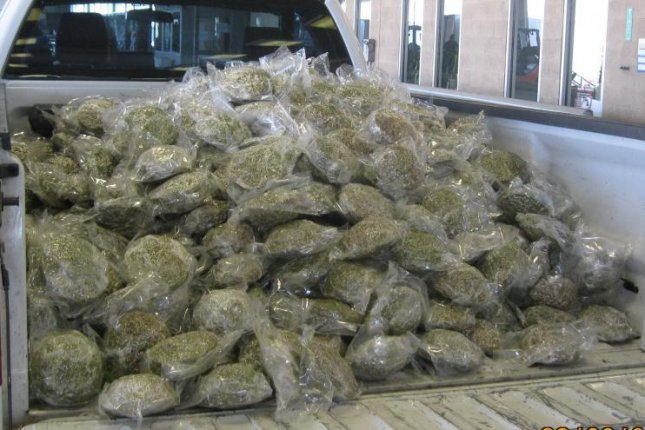 U.S. Customs and Border Protection agents in Texas seized 661 packages of marijuana hidden in a shipment of fresh broccoli. Photo courtesy of U.S. Customs and Border Protection