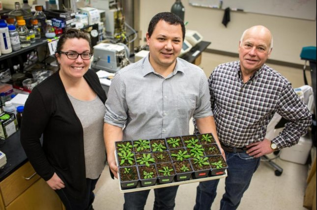 University of Illinois researchers -- including USDA/ARS scientist Paul South (center), USDA/ARS scientist Don Ort (right), and Amanda Cavanagh (left) -- report in Plant Cell the discovery of a key protein in the photosynthesis process that they hope to manipulate to increase plant productivity. Photo by Claire Benjamin/University of Illinois