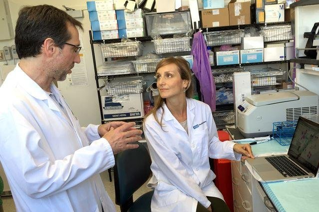 Dr. Antoni Ribas, at left, and Dr. Helena Escuin-Ordinas report in a new study that the cancer drug vemurafenib may be useful for wound healing. Photo by Peter Bracke/UCLA