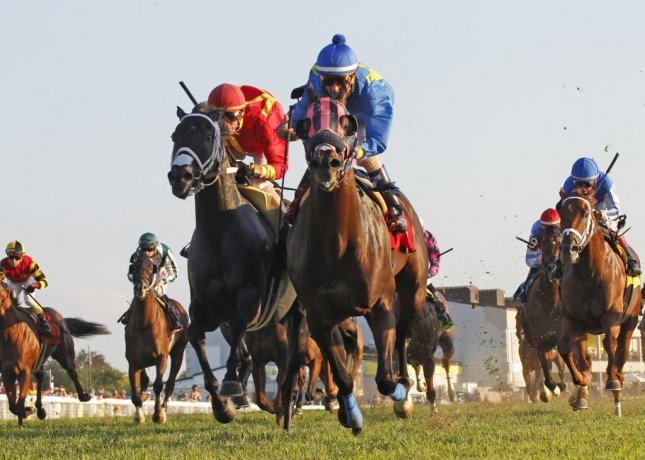 Successful Native wins the Kentucky Downs Turf Sprint on Saturday. Photo by Reed Palmer/Kentucky Downs