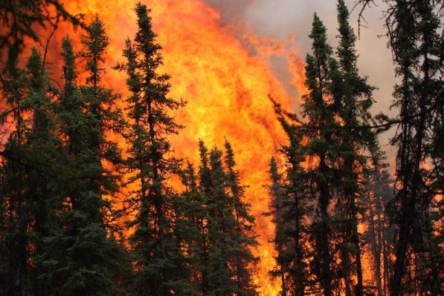 As the climate warms, scientists expect an increase in the size and frequency of wildfires in many parts of the world, including Alaska and the boreal forests of the Arctic. Photo by Scott Rupp/University of Alaska Fairbanks