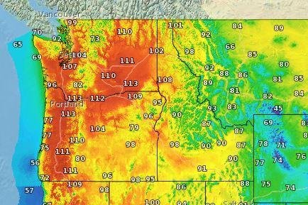 Maximum highs forecast Sunday by the National Weather Service. Map courtesy NWS