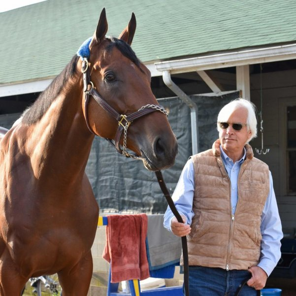 Trainer Bob Baffert is preparing Kentucky Derby winner American Pharoah for Saturday's Preakness Stakes, the second jewel of the Triple Crown. Photo courtesy Pimlico/Mike Kane
