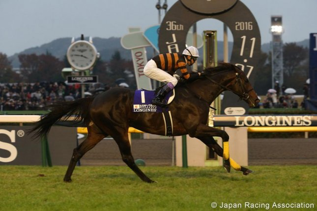 Caption: Kitasan Black, seen winning the 2016 Japan Cup, will try for a repeat Sunday at Tokyo Racecourse. (JRA photo)