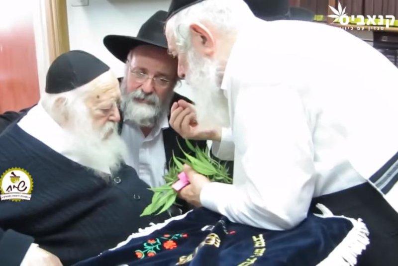 Ultra-Orthodox rabbi declares medical marijuana kosher for Passover