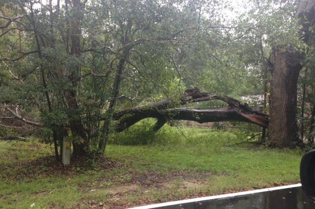 Hurricane Michael downed trees and caused flooding throughout Florida before making its way to Georgia. Photo courtesy of the Gadsden County Sheriff's Office