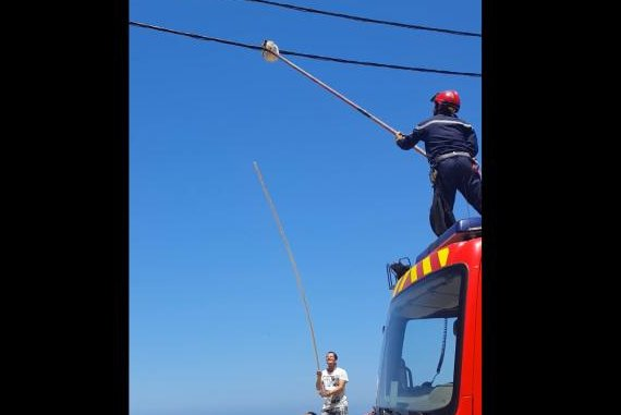 A rescuer attempts to break a cat's grip on a power line in Algeria. Screenshot: Salah Oran/YouTube