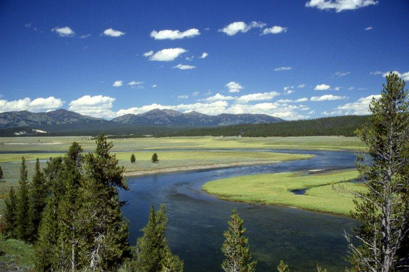 Yellowstone volcano: Could fleeing animals predicate eruption? [UPDATED]
