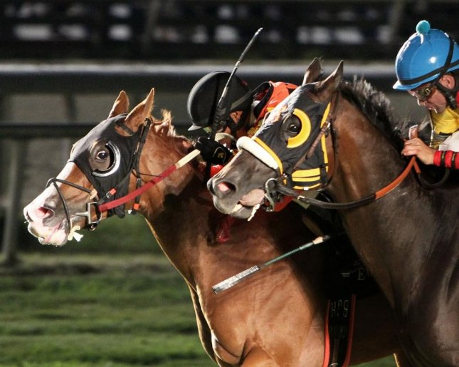 Quick Dagger puts a head in front in Saturday's Turf Express Stakes at Evangeline Downs. (Coady Photography)