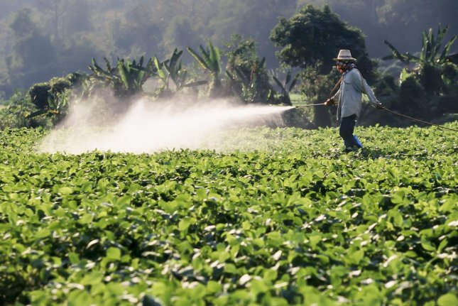 New research on farmers' exposure to pesticides links several of the most commonly used chemicals to both allergic and non-allergic wheezing, report researchers at North Carolina State University. Photo by Toa55/Shutterstock