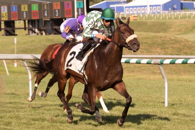 Morticia wins Saturday's Stormy Blues Stakes for 3-year-olds at Laurel Park. Photo courtesy of Laurel Park