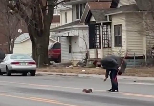 A Hope Center for Kids staff member in Omaha helped rescue a squirrel with a cereal bowl stuck on its head. Joey Wolfe followed the squirrel to a street outside the center and popped the container off of its head.  Screen capture/Hope Center for Kids/Facebook