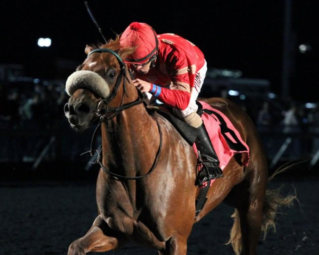 Surgical Strike wins Saturday's Battaglia Memorial at Turfway Park. On to the Spiral Stakes and Kentucky Derby? (Turfway Park/ Coady Photography)