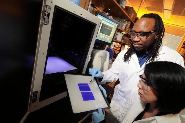 Georgia Tech/Emory University biomedical engineering associate professor Manu Platt, left, and graduate student Keon-Young Park examine gels that display the activity levels of cathepsins, which are protein-degrading enzymes. In a new study, the researchers are studying levels of cathepsins and other signaling chemicals in an effort to predict the invasiveness of breast cancer in individual patients. Photo by Gary Meek/Georgia Institute of Technology