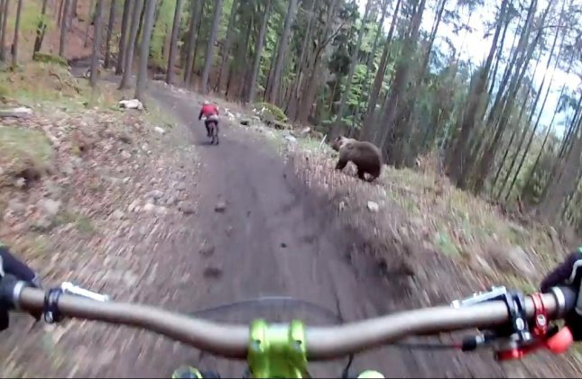 A pair of cyclists were chased down by a bear while riding on a bike trail in Slovakia.  Screen capture/Dusan Vinzik/YouTube