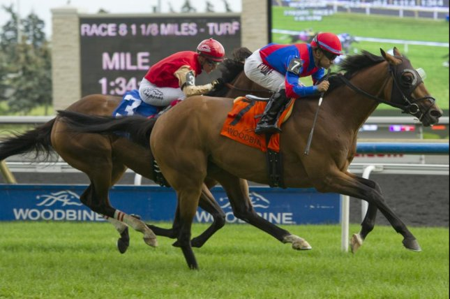 Are You Kidding Me wins Sunday's Nijinsky Stakes at Woodbine (Woodbine photo)