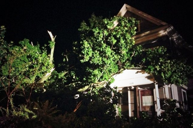 Tree limbs landed on houses but caused no structural damager in an EF-0 tornado in Worcester, Mass., on Aug. 31, 2014. (Twitter/Justin Michaels)