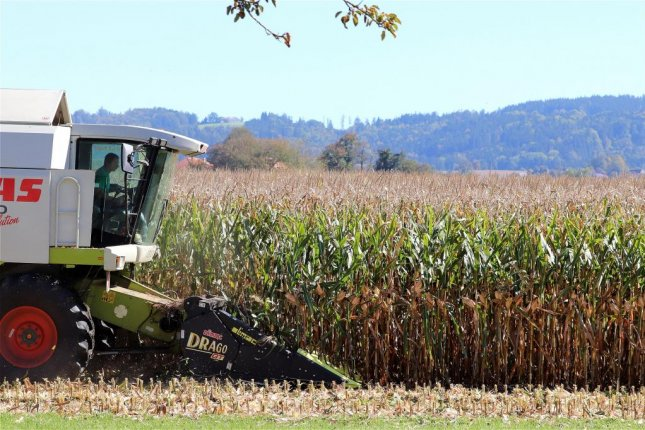 As harvest season begins, corn growers welcomed news that the Trump administration plans to increase biofuel blending requirements. Pixabay