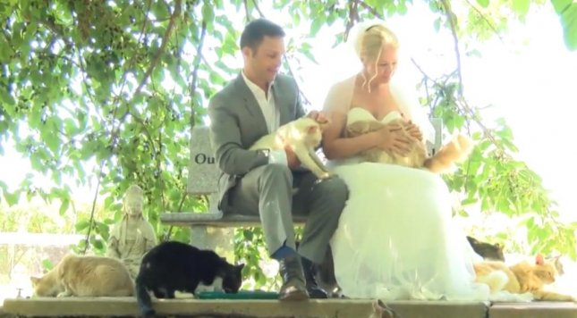 A Canadian couple celebrated their common love for animals by holding the first ever wedding at California's Cat House on the Kings. Dominic Husson and Louise Veronneau had their wedding officiated by Cat House founder Lynea Lattanzio as 1,100 cats watched.  Screen capture/WILX/Inform, Inc.