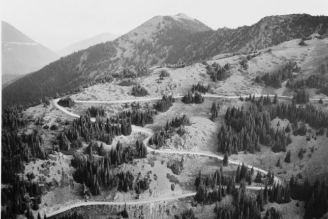 A new study quantifies the extent to which human development has fragmented the world's forests. Photo by Library of Congress/NPS