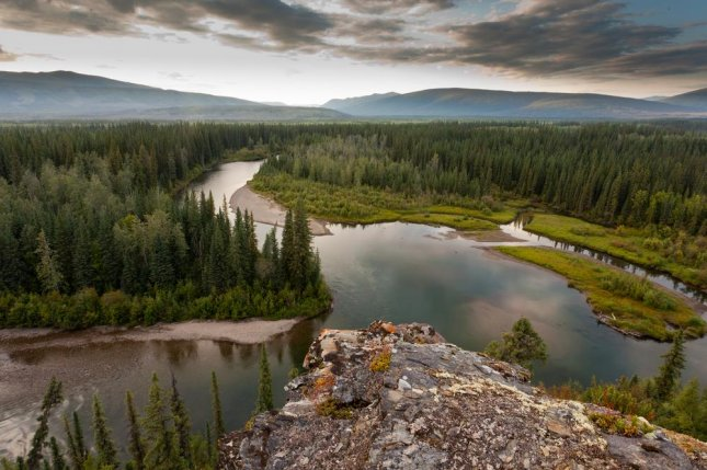 The taiga in Canada's Yukon Territory. Photo by Pi-Lens/Shutterstock