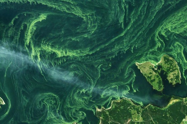 New research suggests global warming and overfishing are making worse the problem of nutrient overload in the ocean, which causes harmful algal blooms. Photo by Mapbox/Flickr