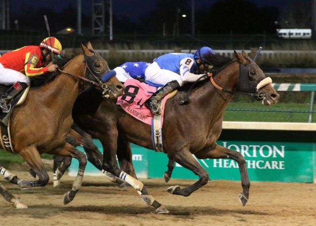 Effinex, seen winning last year's Clark Handicap at Churchill Downs, is back in Saturday's Grade I Jockey Club Gold Cup at Belmont Park. (Churchill Downs photo)