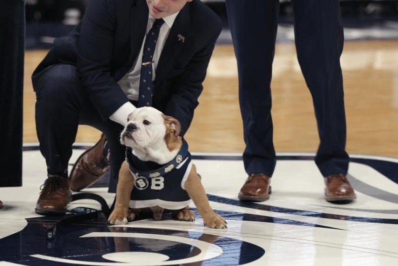 Season 2 of Netflix's docuseries Dogs features a university mascot. Photo courtesy of Netflix