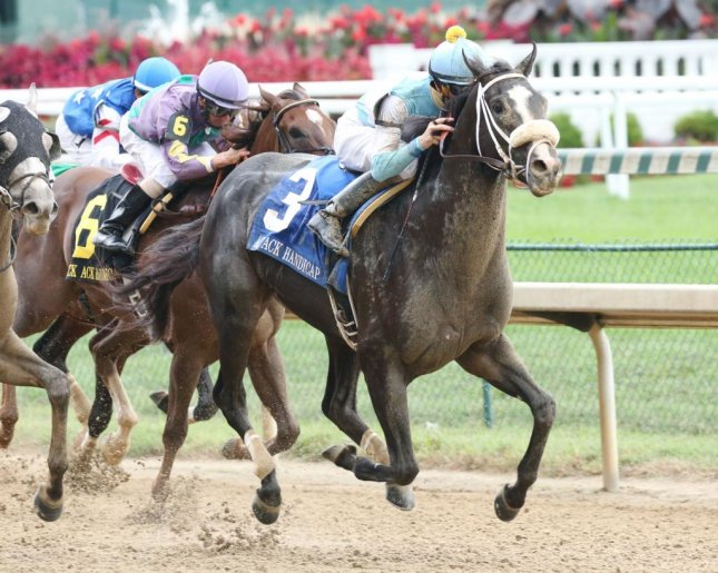 Tom's Ready wins Saturday's Ack Ack Handicap at Churchill Downs, headed to the Breeders' Cup Dirt Mile. (Churchill Downs photo)