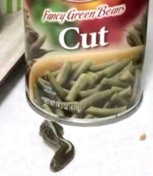 A Utah woman found a snake head in a can of green beans while preparing a meal for her church's Young Women's group. Screen capture/WEAU/Inform