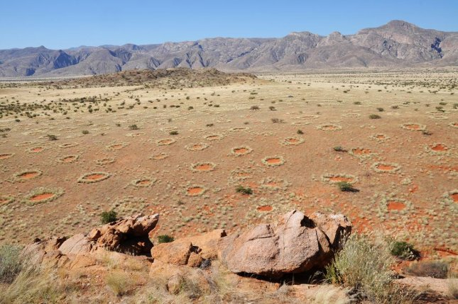 The mysterious fairy circles of Namibia. (Dr. Stephan Getzin/UFZ)