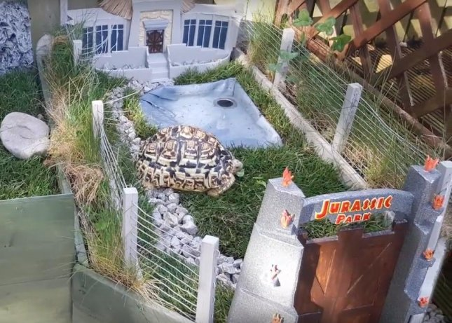 A photographer constructed a faithful recreation of Jurassic Park for his pet tortoise Louie. The structure includes a grazing area, pool and a recreation of the visitors center and the iconic park gates. 