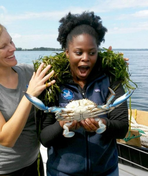 Students from Maryland's Aberdeen High School encountered a massive blue crab while on a Chesapeake Bay Foundation education boat. Photo courtesy of the Chesapeake Bay Foundation