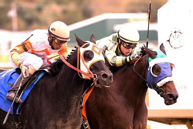 Jack's in the Deck (blue blinkers) defeats a stubborn Ben's Cat in Saturday's (Oct. 17) Maryland Million Sprint. (Laurel Park photo)