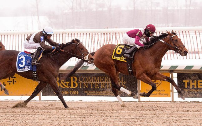 Marengo Road survives the snow to win Monday's Miracle Wood Stakes for 3-year-olds at Laurel Park. (Laurel Park photo)