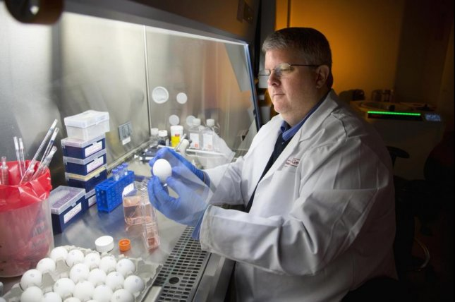 Ted Ross, director of the University of Georgia's Center for Vaccines and Immunology, works on a new version of the flu vaccine that protected mice in a study from infection by a wide range of strains of the virus. Photo by Billy Howard/University of Georgia