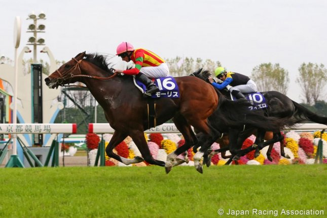 Maurice, shown here winning the 2015 Mile Championship in Japan, returns to action Sunday in Tokyo in the Group 1 Yasuda Kinen. (JRA photo)